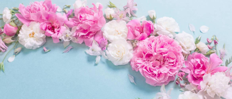 servizio-fioricoltura.jpg
